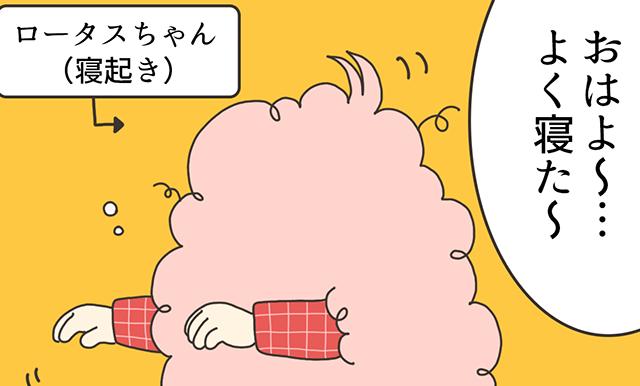 ロータスちゃんの日常 第13話「ねこちゃんを探せ」作家:わたなべもちもち